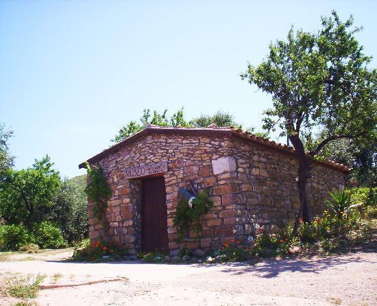 Villa Splendore: Museo della civiltà contadina