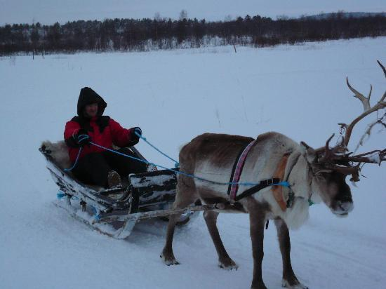 Hotel Jussantupa: At the Reindeer camp