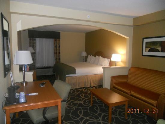 亞特蘭大 - 斯通山智選假日飯店張圖片