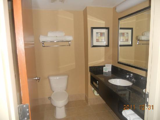 Holiday Inn Express Stone Mountain: Bathroom