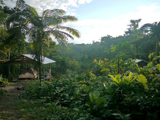 Huaorani Ecolodge: Campsite