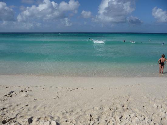 Todo un espectáculo Arashi beach Aruba