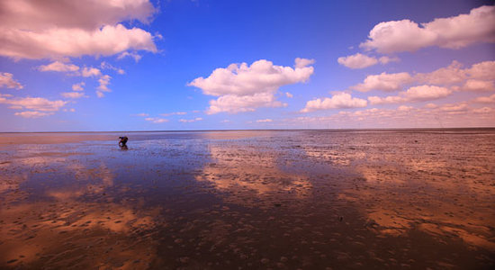 Jylland, Danmark: la mer est ton miroir