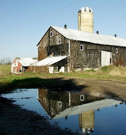 Bruce County, Canada: Beautiful Farmland and Scenery