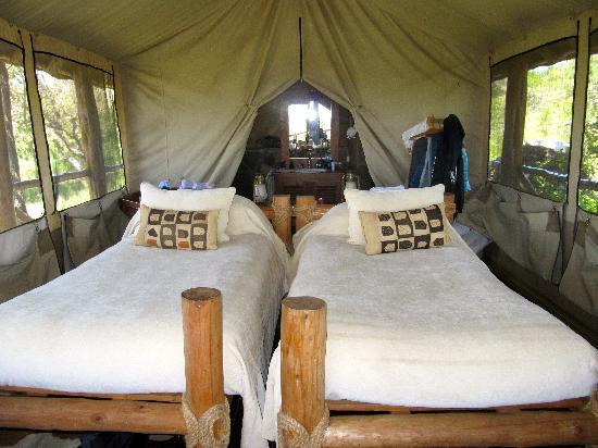 Campi ya Kanzi: la tenda