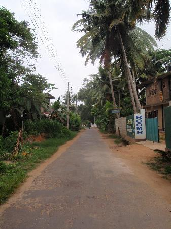 Main road thru Polhena