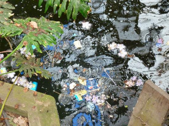 Zoo Buenos Aires: Sporcizia e rifiuti 1