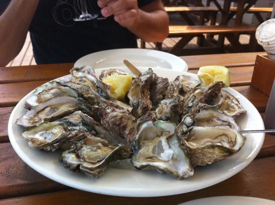 Quay Four Knysna: wild oysters-like nothing else