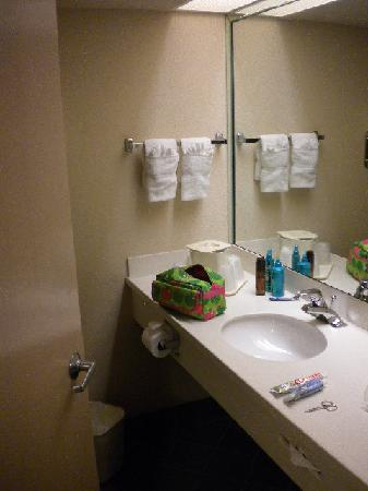 Comfort Suites Miami / Kendall: Banheiro