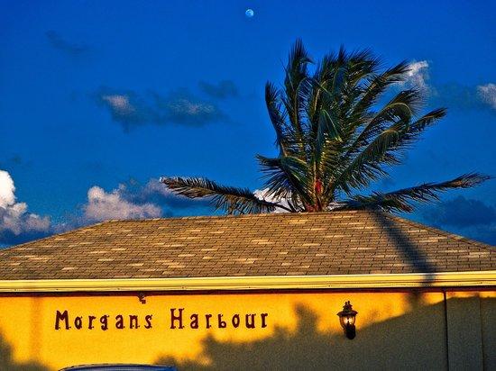 Morgan's Harbour : Morgans Harbour