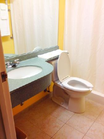 Microtel Inn & Suites by Wyndham York: no bathtub but large, clean bathroom and shower :D