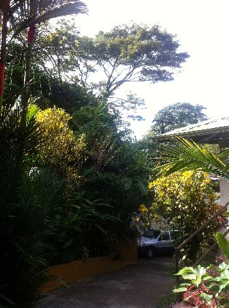 Coyaba Tropical Bed and Breakfast - Adults Only: entrance area