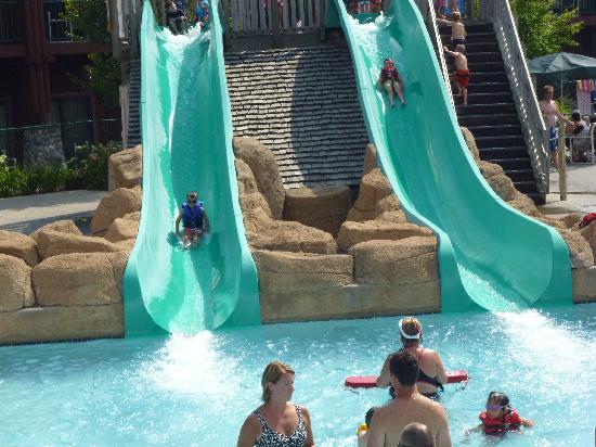 Wilderness Territory: Awesome dual kids slide for the little ones.