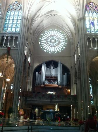 Cathedral Basilica of the Assumption: organ
