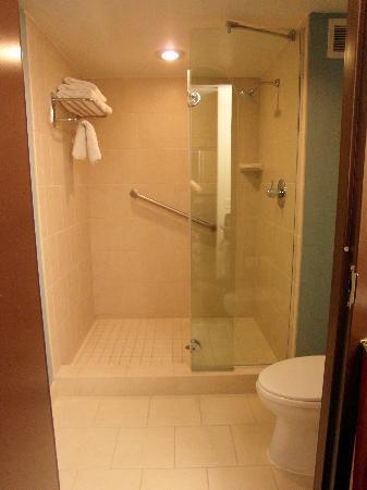 Hyatt Place Richmond Airport: Bathroom