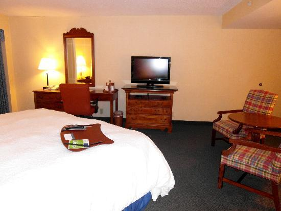 Hampton Inn Salem East-Electric Road : Clean, comfy, spacious room