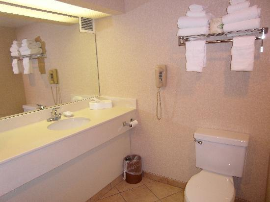 Hampton Inn Salem East-Electric Road: Bathroom vanity/sink area-- countertops should be updated