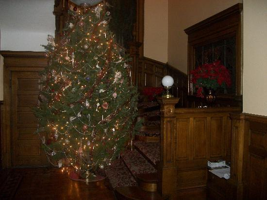 Gibson Mansion Bed and Breakfast: Main Stairway w. tree