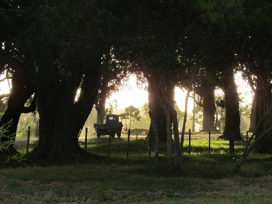 Aguas Dulces, Uruguay: photo taken from the playground onto the street