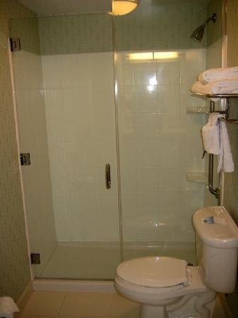 SpringHill Suites Detroit Auburn Hills: Shower room