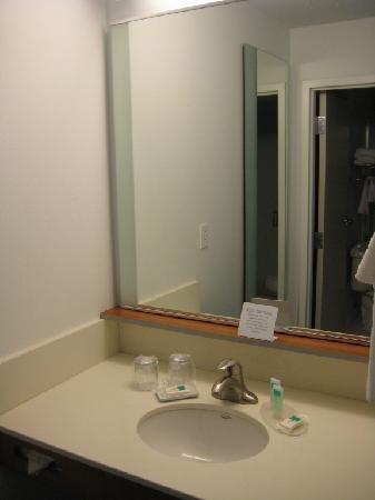 SpringHill Suites Detroit Auburn Hills: Bathroom sink