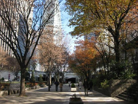 Tokyo Metropolitan Government Buildings : walking to the building