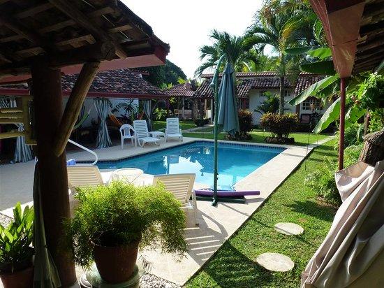 Villa Botero By Casa Mojito: pool - garden