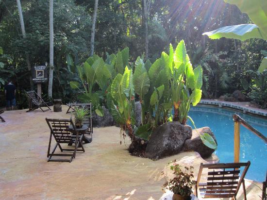 Yacutinga Lodge: Pool area