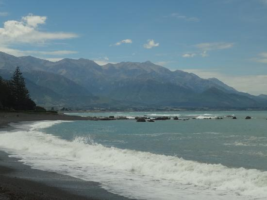 Kaikoura Apartments: The view from the beach in front of the property