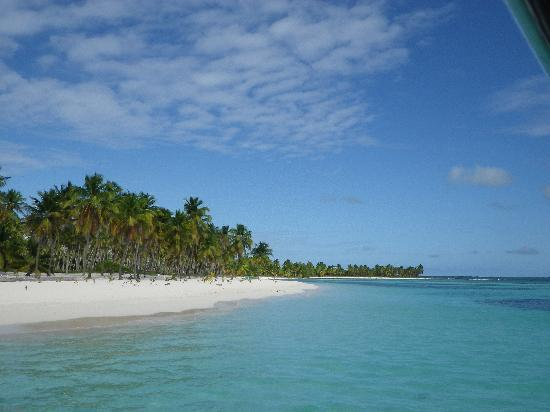 Pro excursions Bayahibe: Saona Paradise
