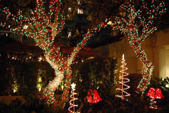 ilikai hotel luxury suites ilikai christmas lights