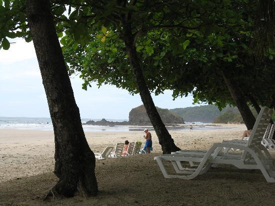 Parque Nacional Marino Las Baulas: Shaded area with trees at Playa Grande