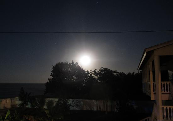 Paradise Found: moonrise