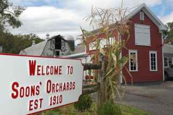 New Hampton, NY: Welcome to Soons Orchards! 100 years and still growing strong!