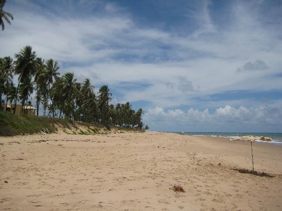 Der Strand des Iberostar Bahia