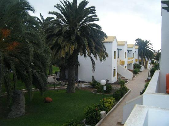 Los Alisios / Dunas : view of the grounds from our balcony