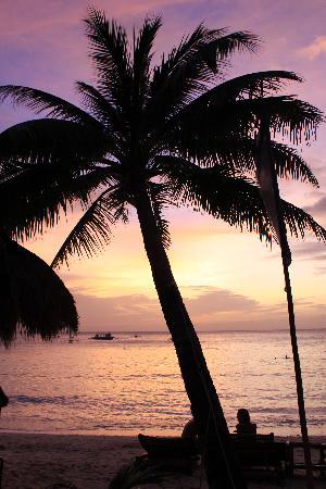 The Beach House Boracay: Пляж