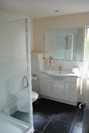 Kaikoura Apartments : bathroom