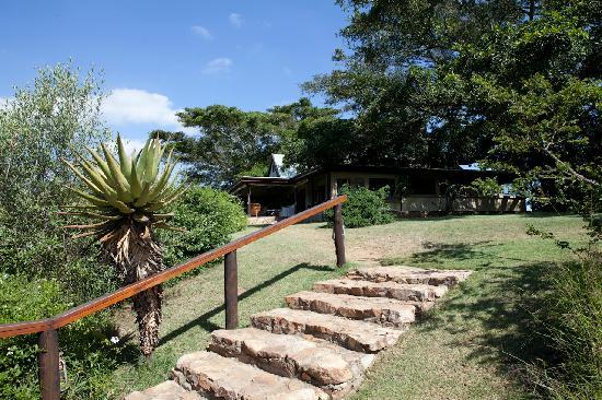 Camp Figtree: Weg zum Hauptgebäude