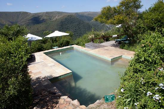 Camp Figtree: Der Pool, sah ein wenig dreckig aus...