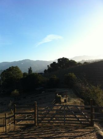 Garrod Farms Riding Stables: Beautiful Scenic Trails