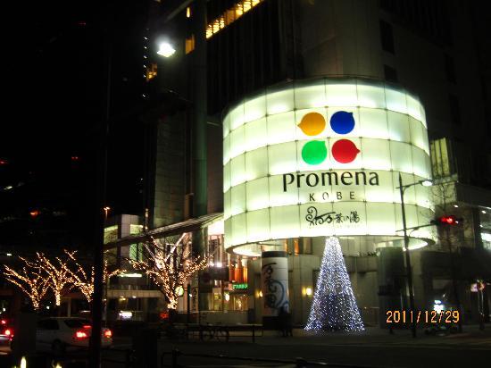 Manyo Onsen: プロメナ入口 12月