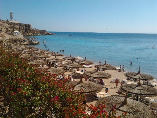 Reef Oasis Beach Resort : la spiaggia
