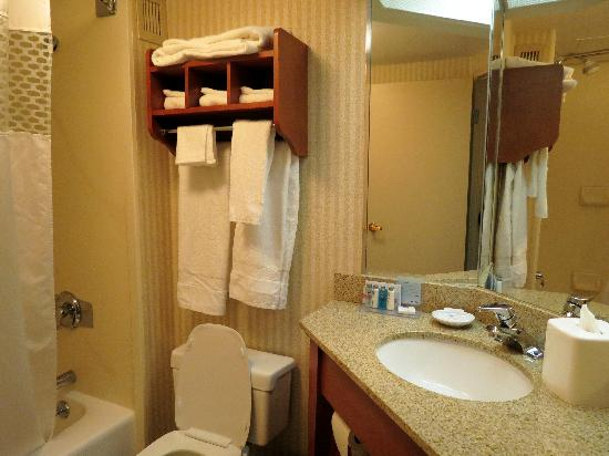 Hampton Inn Toledo South Maumee: Bathroom with complimentary toiletries.