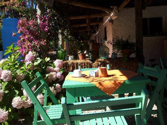 Hotel Y Posada La Chihuahua : Terraza y comedor al aire libre