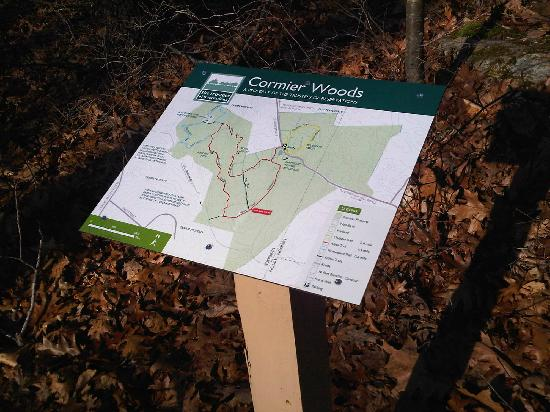 Cormier Woods: Well marked trails