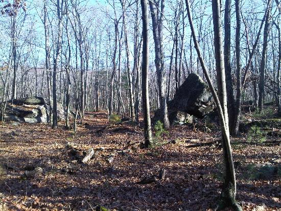 Cormier Woods: Boulder field on red trail