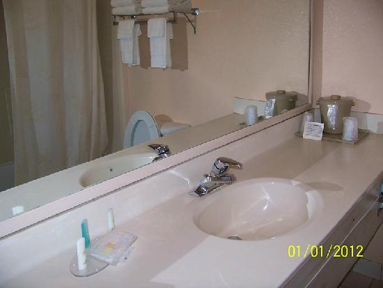 Comfort Inn - De Land: Bathroom