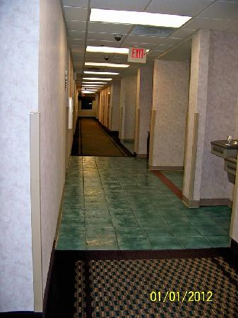 Comfort Inn - De Land: Hallway outside the room.