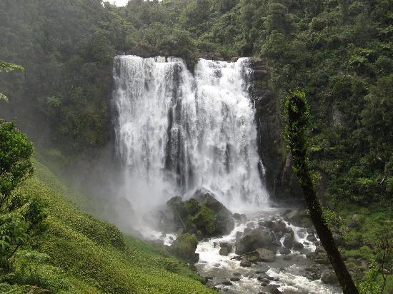 Otorohanga Kiwi Holiday Park: Marokopa Falls